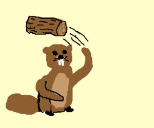 woodchuck-chucking-wood